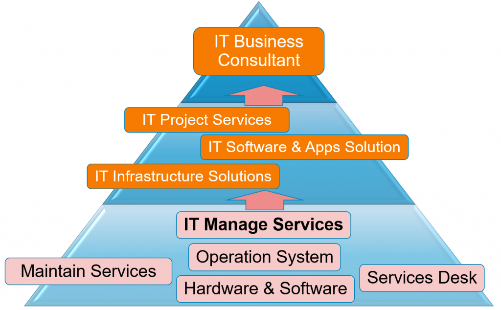 CCVI's Products & Services Pyramid